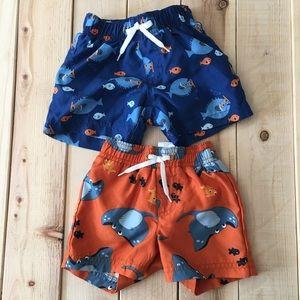 Gymboree infant swim trunks